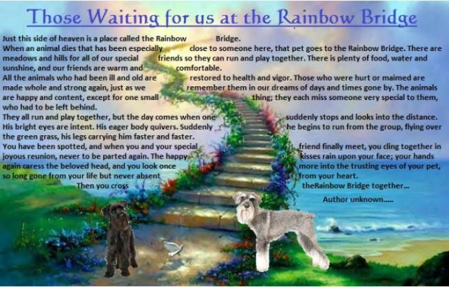 rainbow_bridge_with_poem-713x456